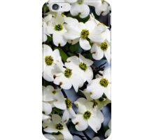 Dogwoods - iPhone and iPod skin iPhone Case/Skin