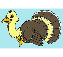 Thanksgiving Turkey with Light Yellow Feathers Photographic Print