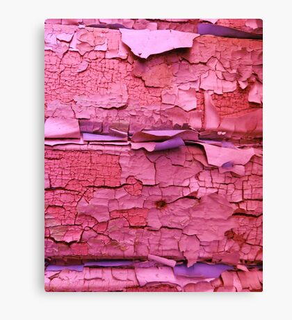 Layer apon layer of pink Canvas Print