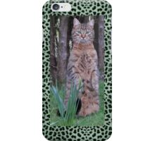Meercat Cat iPhone Case/Skin