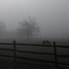 Horse  by melanie1313