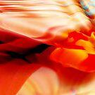 Orange floral disguise by Olga