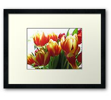 BUNCH OF TULIPS Framed Print