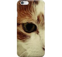 Close Up Kitty iPhone Case/Skin