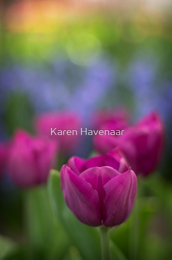 Rainbow Colours by Karen Havenaar
