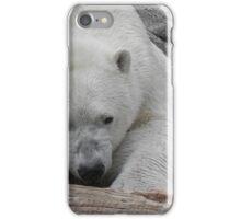 Chill Bear iPhone Case/Skin