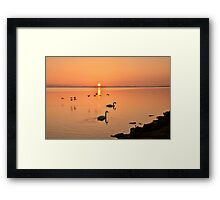 Sunrise Fly by  Framed Print