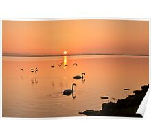 Sunrise Fly by  Poster