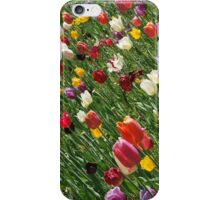 Joyous Spring iPhone Case/Skin