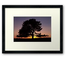 Lone Tree Sunset Silhouette Framed Print