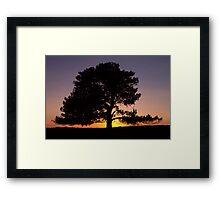 Lone Tree Sunset Silhouette Framed Print