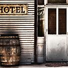 Hotel by Jan Pudney