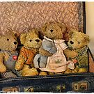 Travelling Bears by Julesrules