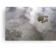 Flooded Plains!  Metal Print