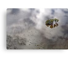 Flooded Plains!  Canvas Print
