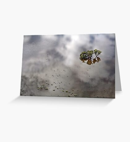 Flooded Plains!  Greeting Card