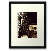 ragamuffin curtain Framed Print