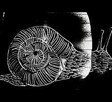 Black Garden Snail by metrostation