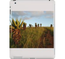 marching up the hill iPad Case/Skin