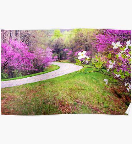 Blue Ridge Kind of Spring Poster