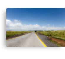 Straight road to vanishing point on the horizon with no traffic. Canvas Print