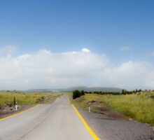 Straight road to vanishing point on the horizon with no traffic. Sticker