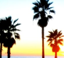Palms Venice Beach Sticker