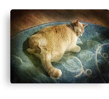 Fat Cat on a Rug Canvas Print