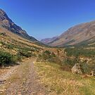 Ennerdale Valley by seanduffy