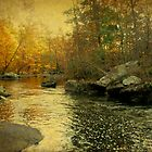 A Golden Autumn at the Unami by MotherNature