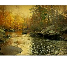 A Golden Autumn at the Unami Photographic Print