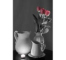 Seeing Color in My Tulips Photographic Print