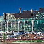 Moss Brae Falls by gotmeamuse