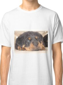 Adorable Rottweiler Puppy With Blue Eyes Classic T-Shirt