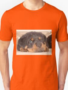 Adorable Rottweiler Puppy With Blue Eyes T-Shirt
