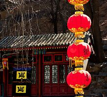 The Red Lanterns by jasminewang