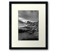 Pine Trees ontop of the cliffs HDR Framed Print