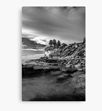 Pine Trees ontop of the cliffs HDR Canvas Print