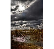 Swamp forest near the village of Brańszczyk Photographic Print