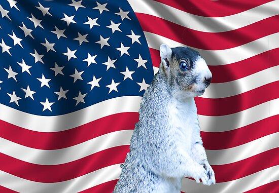 I love America by imagetj