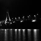 replot bridge by Jari Hudd