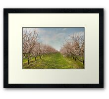 Niagara's Blossom Garden Framed Print