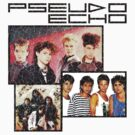 Pseudo Echo by Bradley John Holland