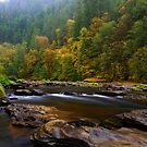 The Beauty Of Lake Creek by Charles & Patricia   Harkins ~ Picture Oregon