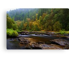 The Beauty Of Lake Creek Canvas Print