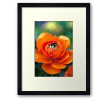 You're stunningly beautiful (even when you leak.) Framed Print