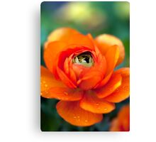You're stunningly beautiful (even when you leak.) Canvas Print