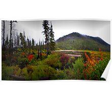 Oregon Cascades ~ Cache Mountain ~ Poster