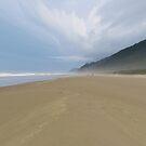 Oregon Coast by Brenda Dahl