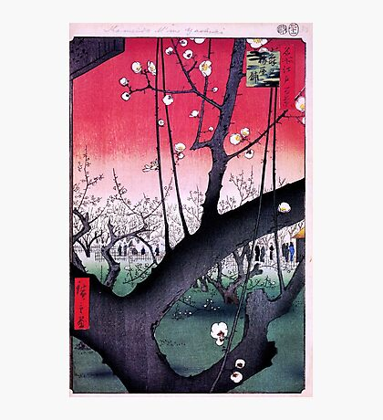 Japanese Print: Cherry Blossoms - Red Photographic Print